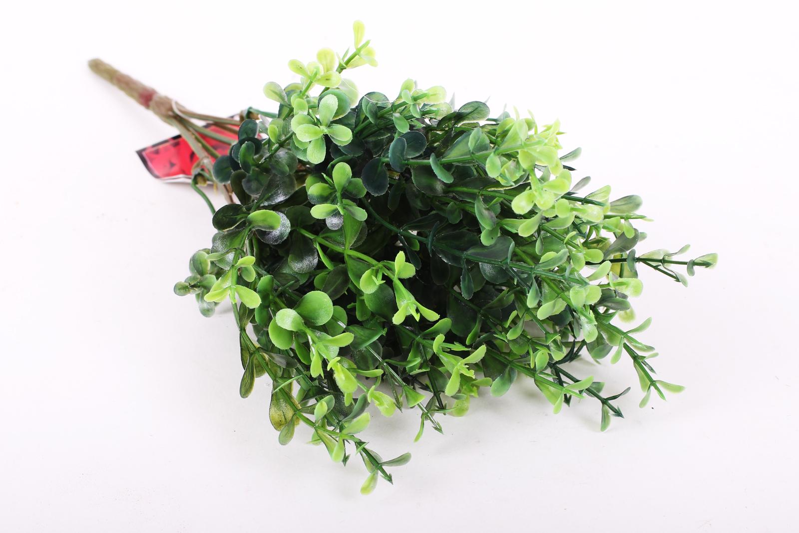 verdeata decorativa naturala