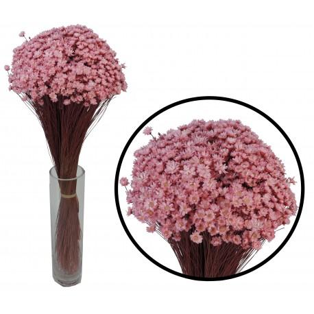 Plante Uscate GLIXIA Roz, 50 gr