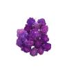 1078 Capete uscate MING Ranunculus 4cm lila