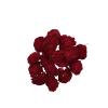 1078 Capete uscate MING Ranunculus 4cm rosu