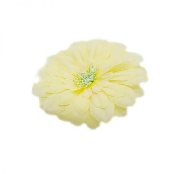 Flori capete diverse galben deschis