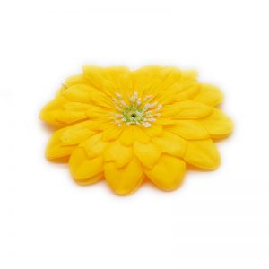 Flori capete diverse portocaliu deschis