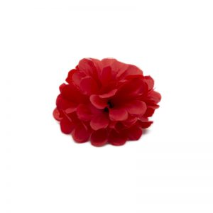 Flori capete diverse rosu englez