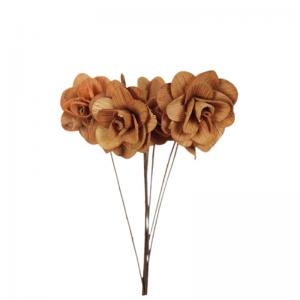 Buchet acacia uscat cu floare de 6cm miere
