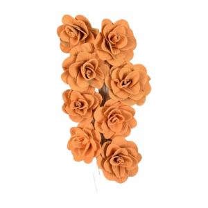 Buchet acacia uscat cu floare de 6cm, portocaliu