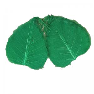 Frunze voal 100 buc, verde inchis
