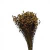 Plante Uscate LEN, Natur 100gr