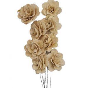 Buchet acacia uscat cu floare de 6cm crem