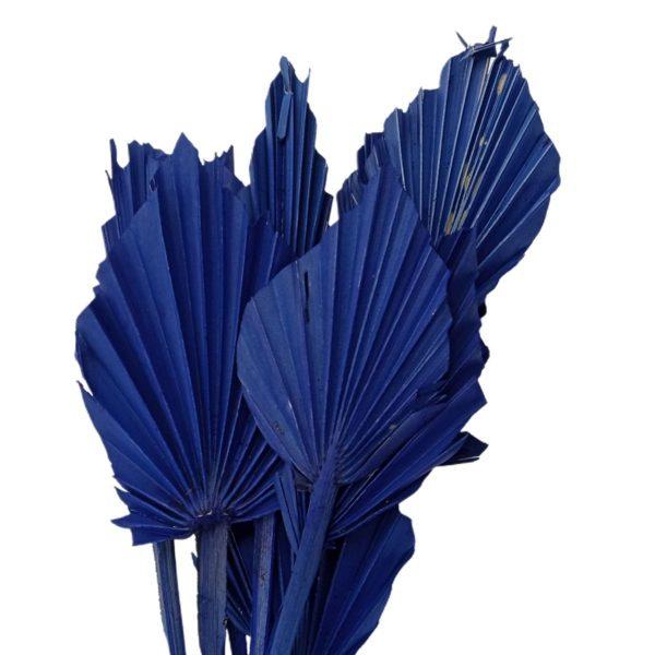 Frunze palmier mini albastru